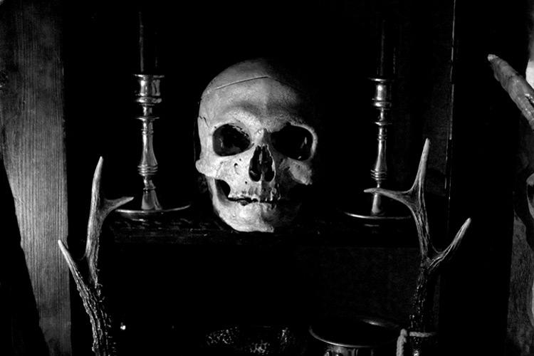 wp-slide-human-skull